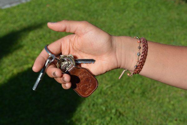Allgäuer Geschenke - der Zeckstick mit Schlüsselring